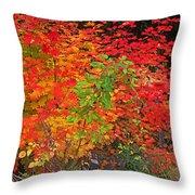 Vine Maple In Oregon Throw Pillow
