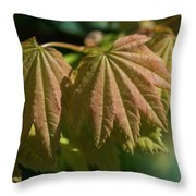 Vine Maple Leaves Throw Pillow
