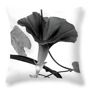 Vine Offering B And W Throw Pillow