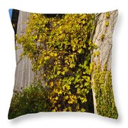Vined Silo Throw Pillow