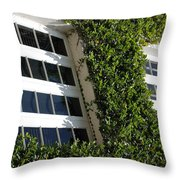 Vines And Glass Throw Pillow