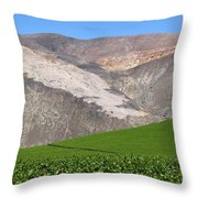 Vineyards In The Atacama Desert Chile Throw Pillow