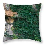 Vines On The Rocks Throw Pillow