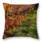 Vineyard 13 Throw Pillow