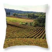 Vineyard 22 Throw Pillow