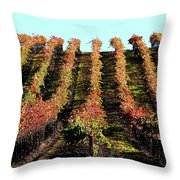 Vineyard 27 Throw Pillow