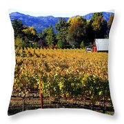 Vineyard 4 Throw Pillow