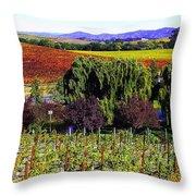 Vineyard 5 Throw Pillow