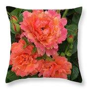 Vineyard Flowers  Throw Pillow