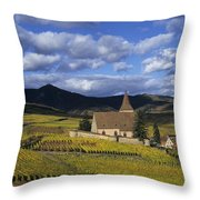 Vineyard In Alsace, France Throw Pillow