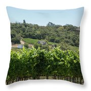 Vineyard In Sebastopol, Sonoma, California Throw Pillow