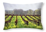 Vineyard In Westfield Throw Pillow