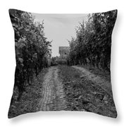 vineyard of old BW Throw Pillow