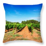 Vineyard Rows Throw Pillow