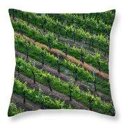 Vineyard Rows - Slovenia Throw Pillow