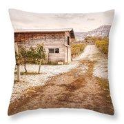 Vineyard Store House Throw Pillow