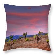 Vineyards At Sunset In Spain Throw Pillow