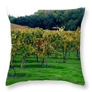 Vineyards In California Throw Pillow