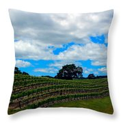 Vineyards In Paso Robles Throw Pillow