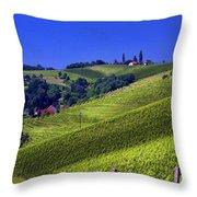 Vineyards Of Jerusalem Slovenia Throw Pillow