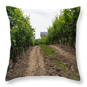 Vineyards Of Old Color Throw Pillow