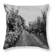 Vineyards Of Old Horizontal Bw Throw Pillow