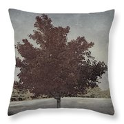 Vintage Autumn Moment Throw Pillow