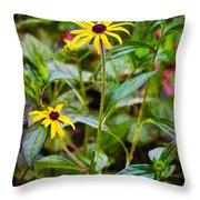 Vintage Black-eyed Susans Throw Pillow
