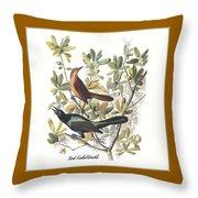Vintage Boat-tailed Grackles Audubon Throw Pillow
