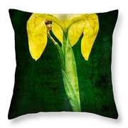Vintage Canna Lily Throw Pillow