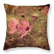 Vintage Cosmos Throw Pillow