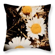 Vintage Daisies Throw Pillow