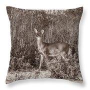 Vintage Deer Throw Pillow
