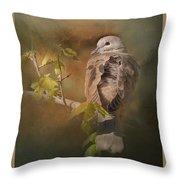 Vintage Dove Throw Pillow