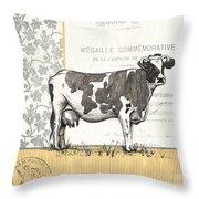 Vintage Farm 4 Throw Pillow by Debbie DeWitt
