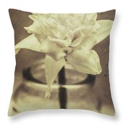 Vintage Floral Still Life Of A Pure White Bloom Throw Pillow