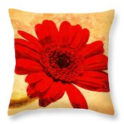 Vintage Gerbera Daisy Throw Pillow