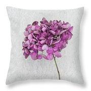 Vintage Hydrangea Throw Pillow