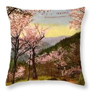 Vintage Japanese Art 14 Throw Pillow