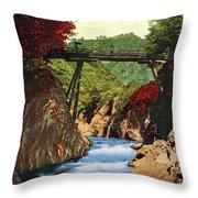 Vintage Japanese Art 18 Throw Pillow
