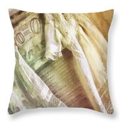Vintage Laundry Washboard Throw Pillow