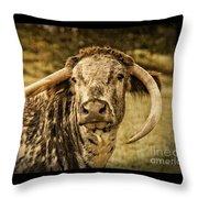 Vintage Longhorn Cattle Throw Pillow