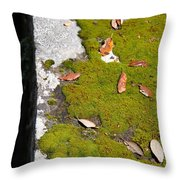 Vintage Moss Throw Pillow