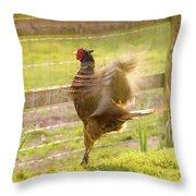 Vintage Pheasant Throw Pillow