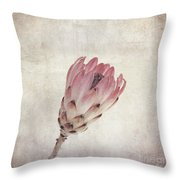 Vintage Protea Flower Throw Pillow