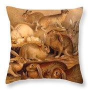 Vintage Rabbit Hutch Throw Pillow