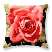 Vintage Rose 02 Throw Pillow