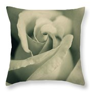Vintage Rose In Green Throw Pillow