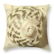 Vintage Seashell Still Life Throw Pillow