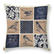 Vintage Songbird Patch 2 Throw Pillow